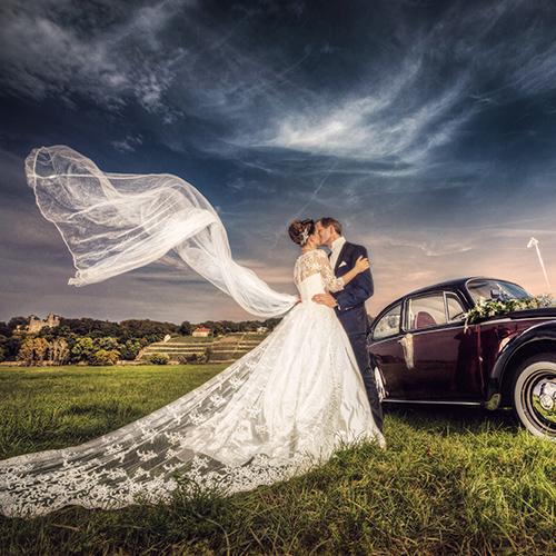 Hochzeitsfotograf Dresden - Ein Hochzeitspaar steht mit wehendem Schleier an der Elbwiese.